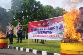 Polresta Padang musnahkan 30 Kilogram ganja kering