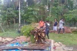 Satu rumah di Lubukbasung Agam rusak tertimpa pohon