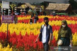 Wisata taman bunga celosia di Palembang Page 1 Small