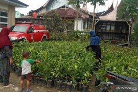 Bantuan bibit gratis dapat memberikan manfaat-perbaikan ekonomi warga