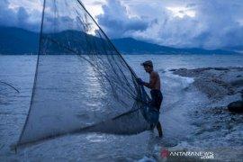 Musim tangkap ikan udang kecil  di Pantai Teluk Palu Page 2 Small