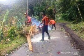 Lima hari, Agam dilanda 161 kejadian bencana alam