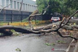 Kota Palembang diterjang angin berkecepatan hampir 100 km per jam