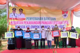 Pemkab Mesuji serahkan bantuan untuk tujuh KWT Pekarangan Pangan Lestari
