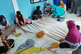 BRI sukses hantarkan Desa Kuala Alam Bengkalis jadi duta Desa BRILian