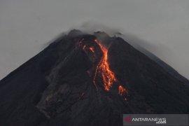 Gunung Merapi 16 kali meluncurkan guguran lava pijar