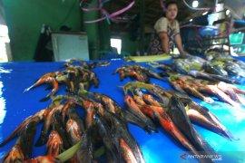 Ikan Hulu\'u asal Gorontalo