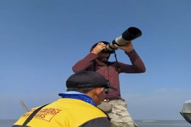 Pantai Mutiara Baru Lampung Timur jadi lokasi pengamatan burung migran