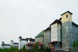 President Jokowi pushes swallow\'s nest, porang plant cultivation