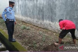 Di Lapas ini  warga binaan pemasyarakatan diajar bercocok tanam dan memelihara ikan