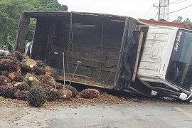 Truk sawit terbalik di tengah Jalan Lintas Sumatera wilayah Mesuji Page 3 Small