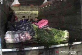 Truk sayur angkut pemudik terkena razia di Bekasi