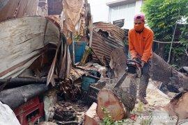DLH Padang siap bantu bersihkan pohon yang timpa rumah warga