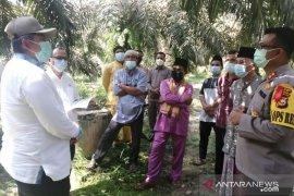 Alfedri tinjau perbatasan Siak-Kampar di Kampung Rantau Bertuah Minas