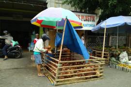 Pedagang musiman picu munculnya pasar tumpah di Makassar