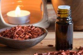 Manfaat kayu cendana merah untuk kesehatan