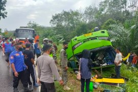 Bus Terbalik di Jalinsum Mesuji, Lampung Page 3 Small