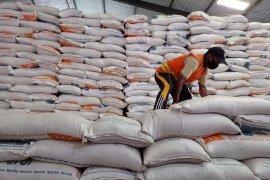 Bulog: tak ada impor beras tahun ini