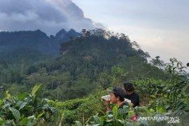 Kulon Progo dikunjungi 40.541 wisatawan selama libur Lebaran