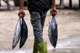 Harga Ikan Segar Naik