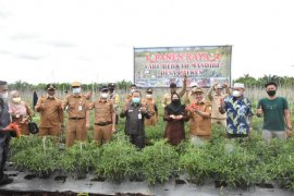 Wabup Bengkalis dorong hasil pertanian dipasarkan ke pegawai