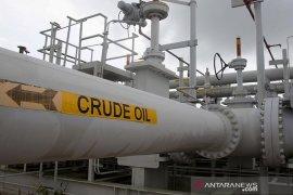 Harga minyak mentah naik setelah aksi jual