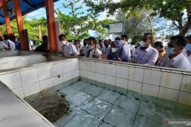 Ini permintaan Wako Pariaman pada Menteri KP terkait pengelolaan konservasi penyu