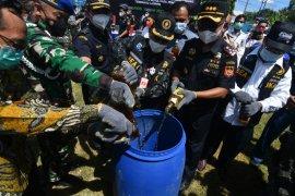 Pemusnahan Hasil Penindakan Bea Cukai di Palu