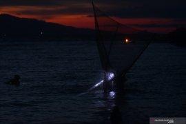 Nelayan Udang Teluk Palu