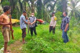 Suku Anak Dalam serahkan senpi rakitan secara sukarela ke Polres Merangin