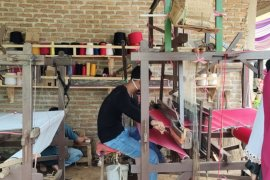 Lampung kembangkan desa wisata bantu bangkitkan ekonomi desa