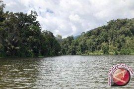 KOMIU Sulteng harap pemerintah optimalkan pengawasan hutan