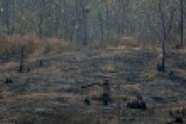 Amerika Serikat akhiri program bantuan untuk Kamboja karena deforestasi, penargetan aktivis
