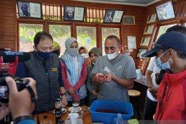 Tapanuli Selatan ikuti lelang kopi di Singapura
