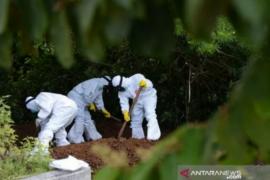 Kasus meninggal akibat COVID-19 di Sultra menjadi 223 orang