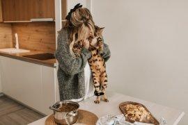Makanan buatan sendiri lebih baik untuk kucing?
