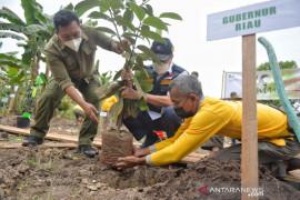 Serahkan 10.000 bibit pohon dan uang pembinaan, Gubri gaungkan santripreneur
