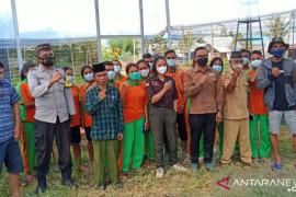 Pelajar SMK Manggarai Barat latihan budi daya tanaman hidroponik