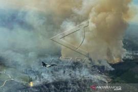 Pesawat Tempur F-16 Temukan Lokasi Karhutlah Di Riau Page 1 Small