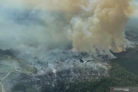 Pilot Pesawat tempur F-16 TNI AU temukan titik api kebakaran hutan dan lahan di Riau Page 2 Small
