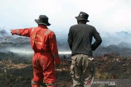 Tim Satgas Karhutla Riau terus berjibaku padamkan kebakaran hutan di Kabupaten Rokan Hilir