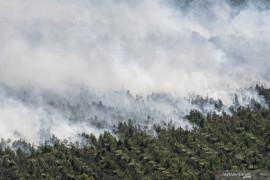 Kebakaran Lahan Perkebunan Kelapa Sawit di OKI Page 3 Small