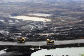 Bukit Asam gandeng CDP, target jadi perusahaan energi kelas dunia peduli lingkungan