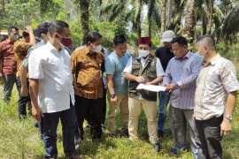Wabup Pelalawan tinjau perbaikan jalan di Bandar Petalangan