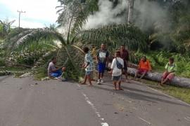 Bupati Manokwari: Hoax meninggalnya Gubernur Papua Barat
