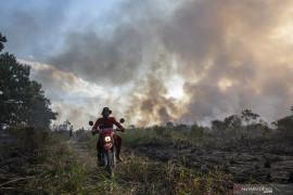 Kebakaran Lahan di Ogan Ilir Page 5 Small