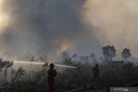 Kebakaran Lahan di Ogan Ilir Page 3 Small