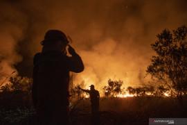 Seluas 15 hektare lahan di Ogan Ilir Sumsel terbakar