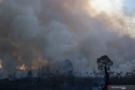 Kebakaran Lahan di Ogan Ilir Page 6 Small