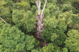 PT Rimba Hutani Mas bantu sarana dan prasarana pencegahan karhutla di TN Berbak-Sembilang